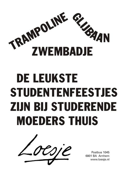 Studerende moeder-Loesje